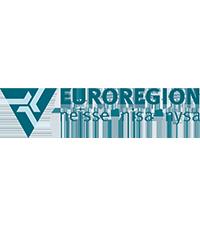 Euroregion Neisse - Nisa - Nysa logo